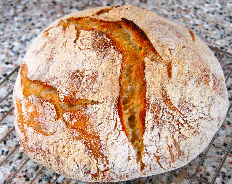 Super Easy No Knead Bread
