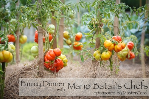 Dinner at NY Botanical Garden with 2 of Mario Batali's Head Chefs