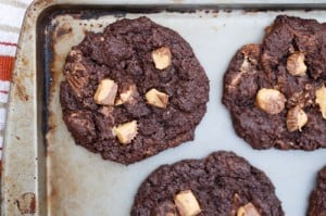 gluten free chocolate pb cookies