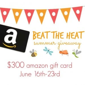 $300 Amazon Gift Card Summer Giveaway!