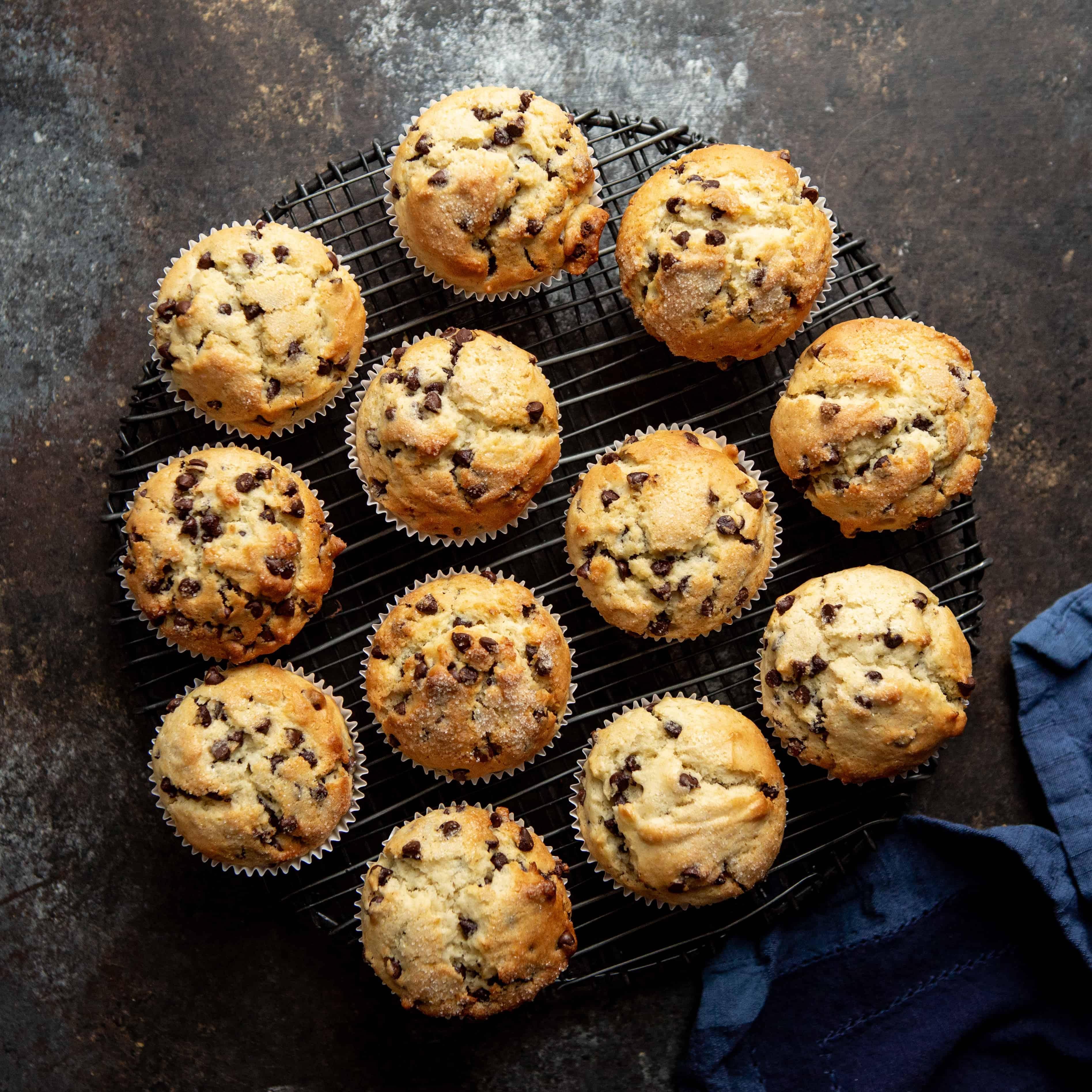 Chocolate Chip Muffins | sharedappetite.com